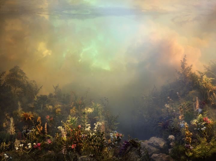 4448 Wildflowers 52i, 36x47, 53x70, 61x81, 2008