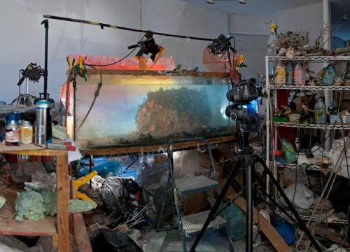 Studio view for Hawaii, 2013